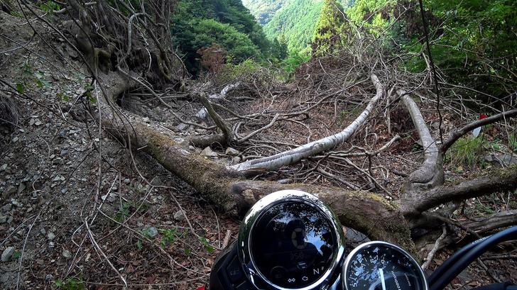 林道の土砂崩れ