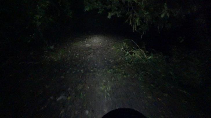 モンキー125と夜の林道
